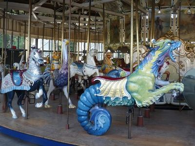 San Francisco Witness LOOFF CAROUSEL