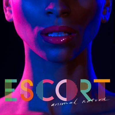 Sfw_escort